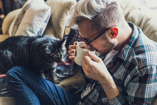kočka u muže