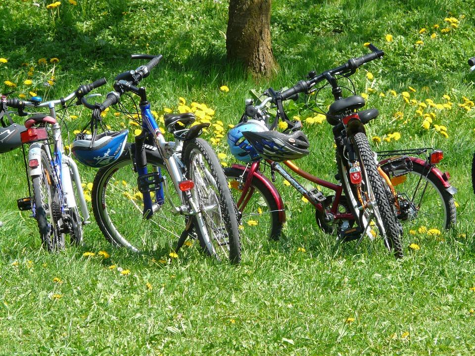 jízdní kola v trávě