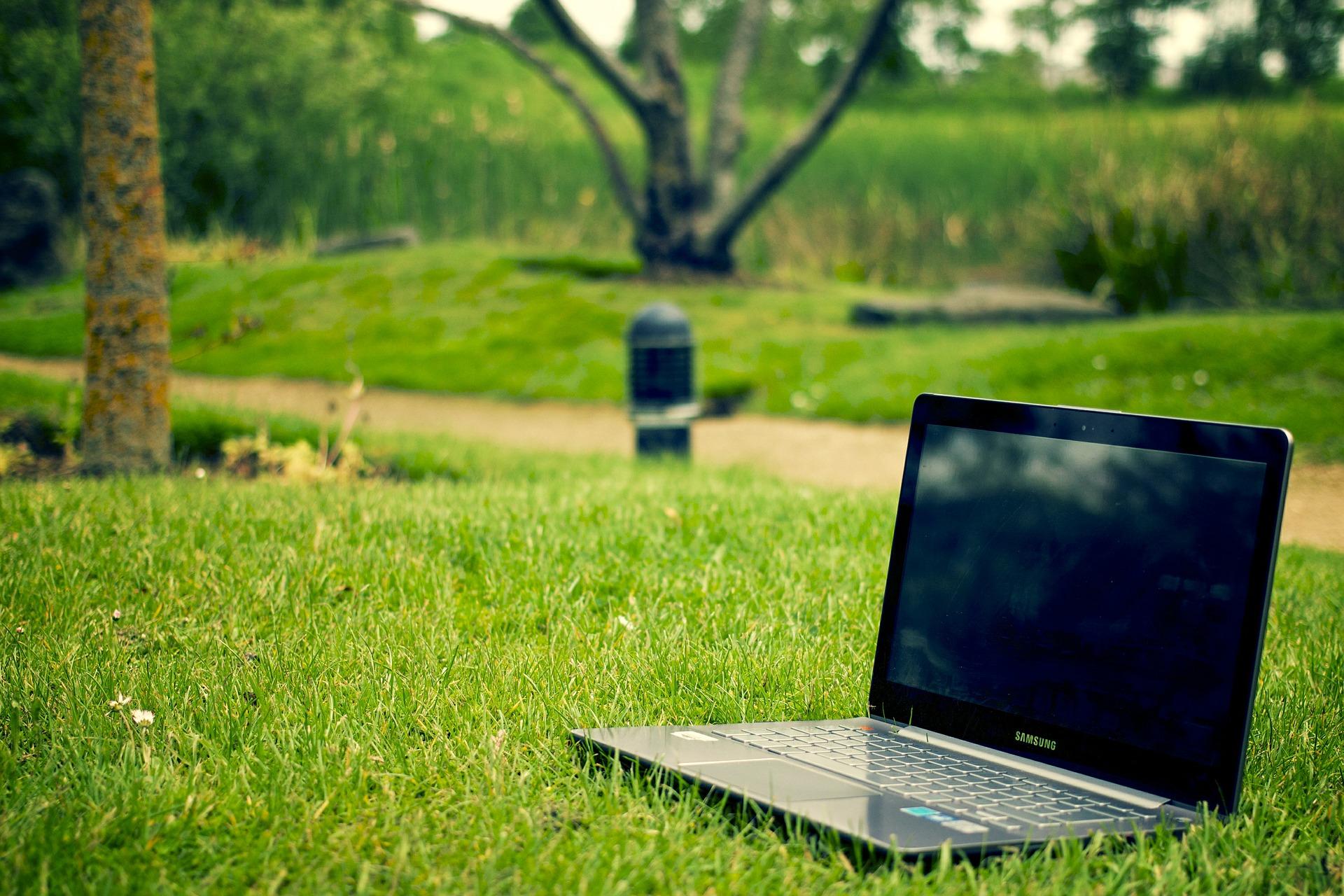 notebook v trávě
